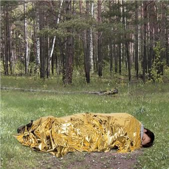 termoodeyalo-Gold-Silver-Track-primenenie1